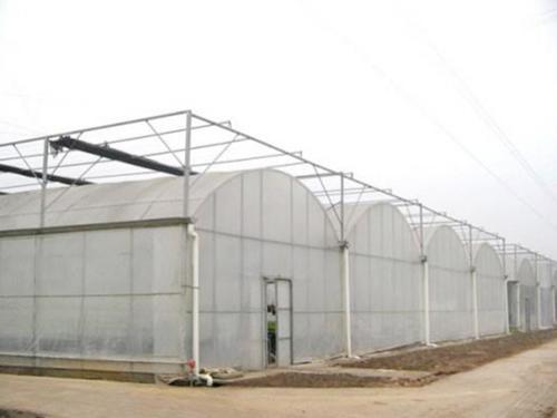 总结连栋温室大棚在夏季的六种降温方式